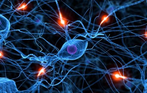 Spustil se projekt tvorby simulace lidského mozku
