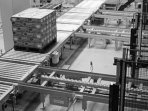 RTEmagicC_conveyors_pallets.jpg