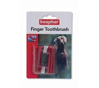 Jak na čištění zubů u pejsků
