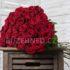 Rudé řezané růže – to je nehynoucí klasika