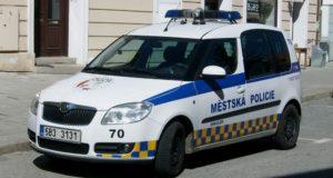 Podmínky pro přijetí k městské a obecní policii v České republice