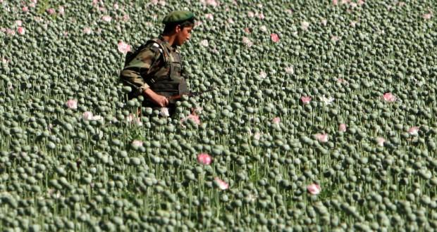 Heroin je nejvíce rozšířenou drogou v Afghánistánu