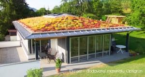 Pořiďte si zelenou střechu, přináší mnoho výhod!