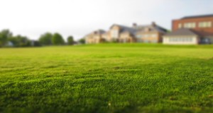 Stojí vás zahrada moc peněz? Ušetřete s půjčovnou zahradní techniky