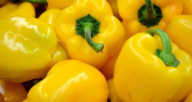 Češi si oblíbili nakupování potravin online