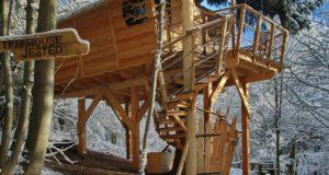 Jaké je to bydlet v lese? Vyzkoušejte luxusní treehouse