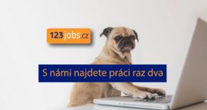 Proč hledat práci složitě, když to jde i jednoduše?